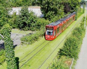 Straßenbahn auf schallschluckendem Rasengleis